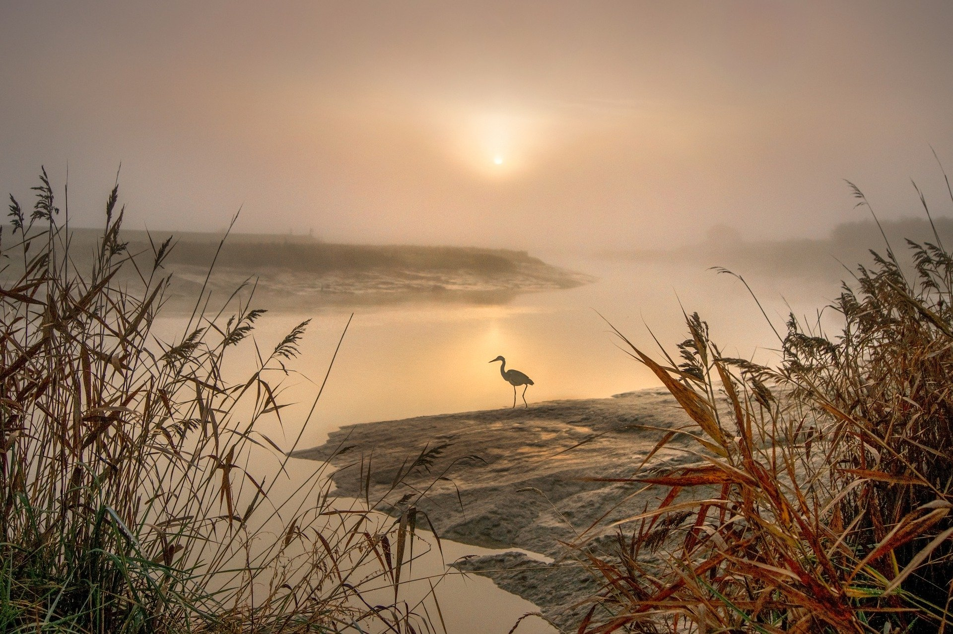 Rising Sun Extended Zazenkai @ Myogenji Temple | Ludington | Michigan | United States